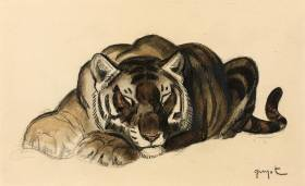 Georges Lucien Guyot, tigre couché, dessin